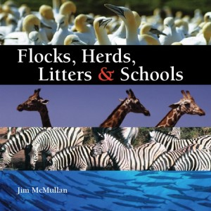 Flocks, Herds, Litters &amp; Schools